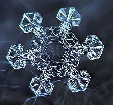 Snowflake1-crop