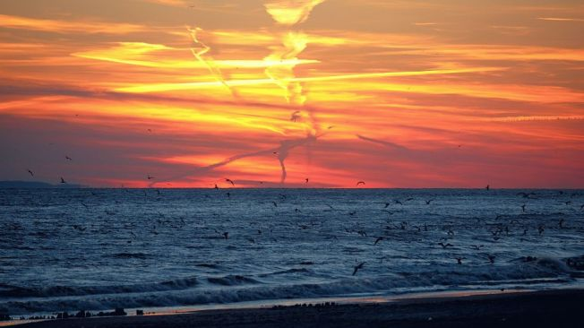 sunset-rockaway_980x551