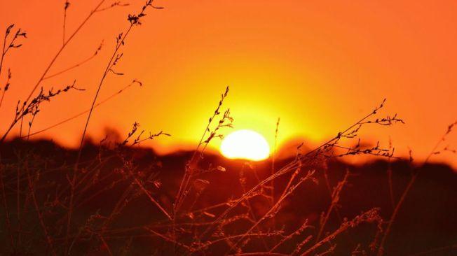 sunset-texas_980x551