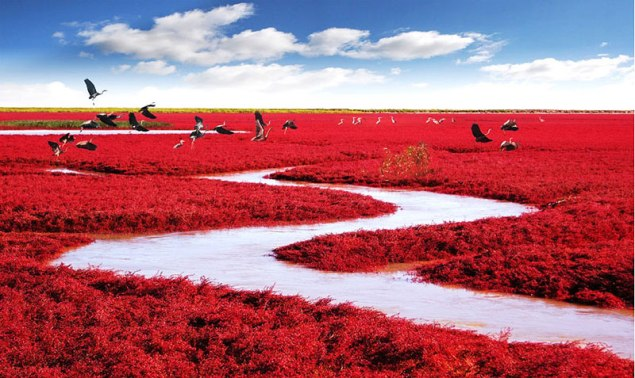 Red Beach – China