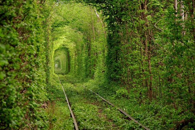 Tunnel of Love – Ukraine