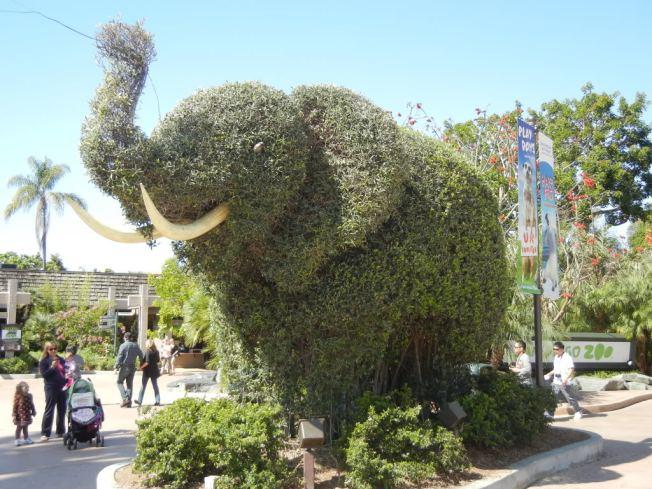 SD Zoo Elephant Topiary