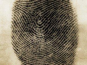 Pinkie Fingerprint