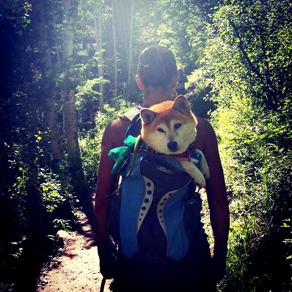 Doggie Backpack