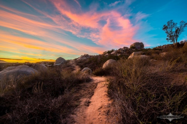 Mission Trails Park, Evgeny Yorobe Photog