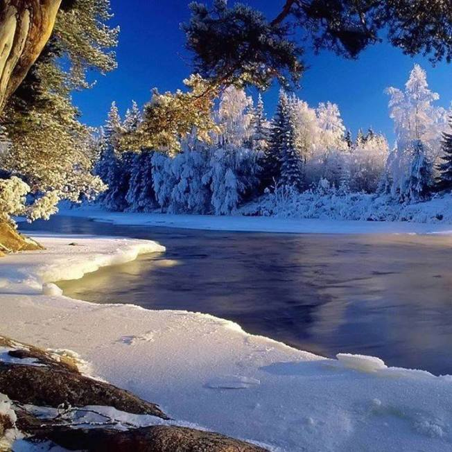 Winter Wonderland, FB