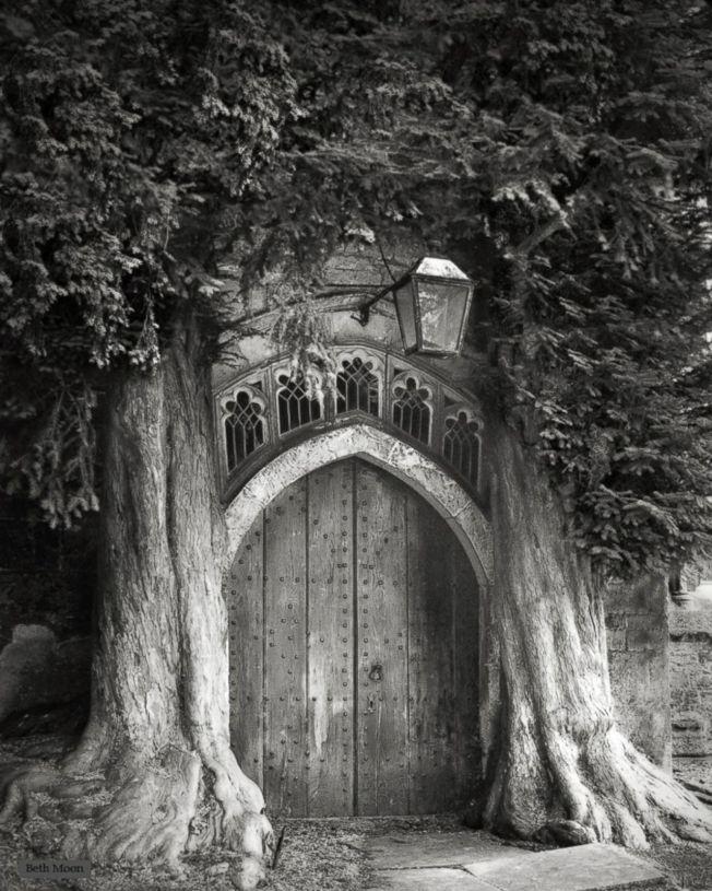Sentinels - England