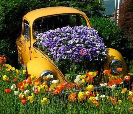 VW Beetle Garden Car, FB
