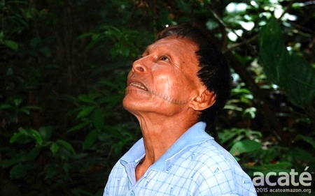 Medicine Man, Matses, Brazil